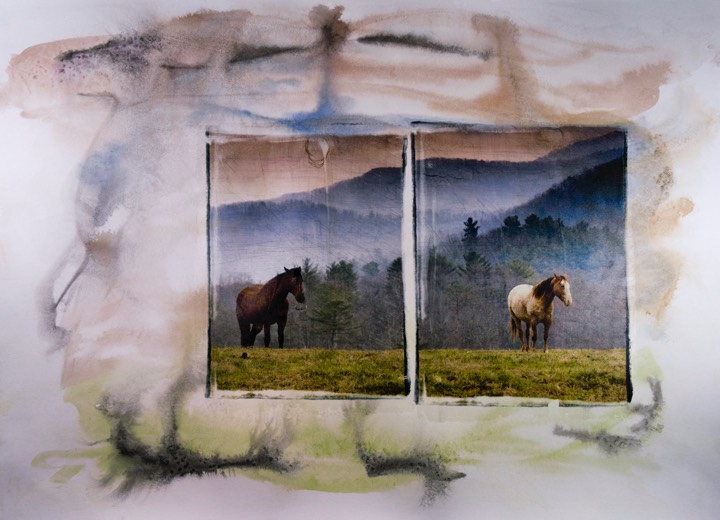 horses diptych
