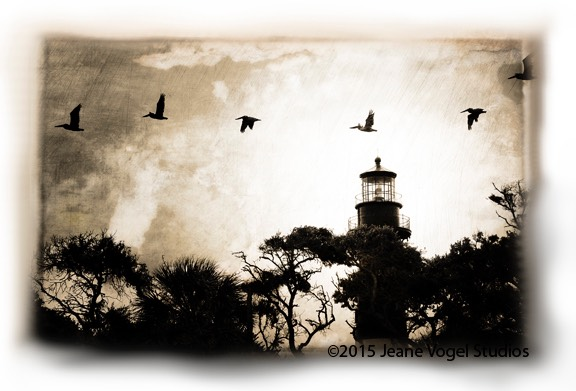 Pelicans Over Hunting Island Light