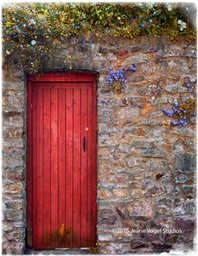 Red Alley Door