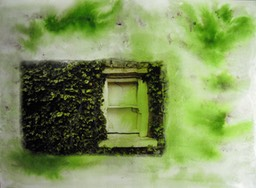 Window Ivy